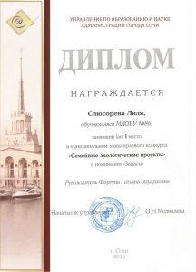 slyusareva-semejnye-ekologicheskie-proekty
